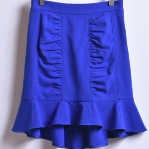 Anthropologie HD in Paris Blue Skirt, Sz 0P